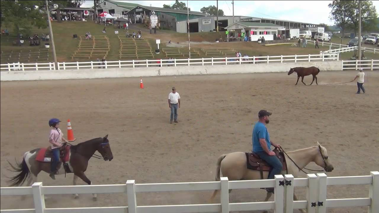 Western Fair Live Video