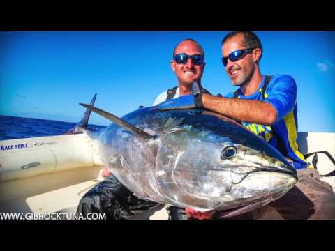 Bay of Biscay - Bluefin Tuna Popping, Day 1