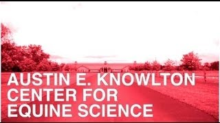 The Austin E. Knowlton Center for Equine Science at Otterbein University