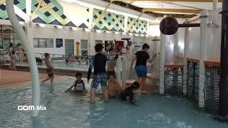 영어캠프 버디들과 함께 수영장 액티비티, 알바니 스테디…
