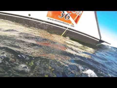 Anchors Away Scuba - Diving the Black Bart wreck - Panama City