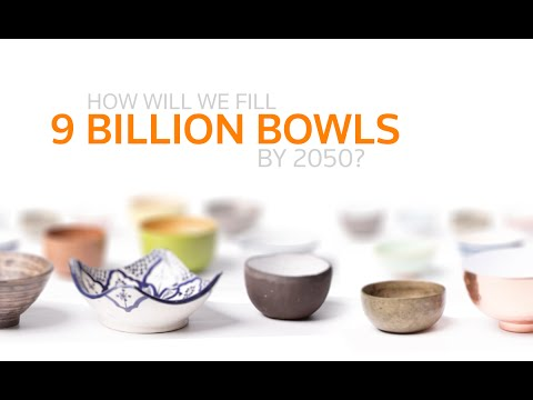 How will we feed 9 billion people in 2050?