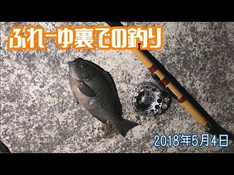 ふれーゆ裏での釣り 2018年5月4日
