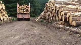 Log Trailer
