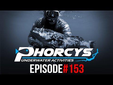 🐟 PHORCYS Spearfishing Worldwide Videos 🌍 #153  - Underwater Activities 2019
