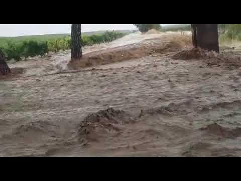 Las tormentas dejan grandes riadas en la Ribera del Duero