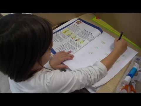 Foundation Christian School Math