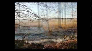 Jolanta Borusiewicz - Moje 4 pory roku