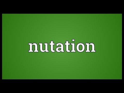 Header of nutation