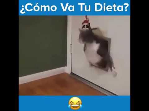 video como va la dieta