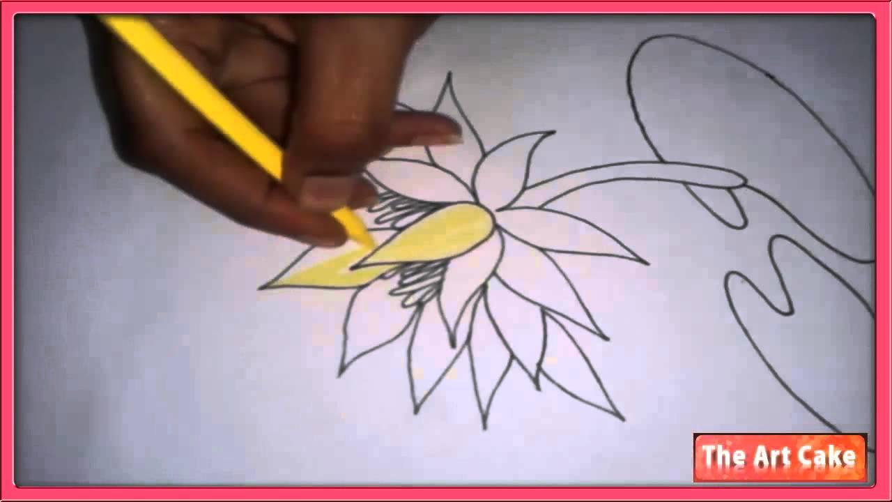 Water lily youtube izmirmasajfo