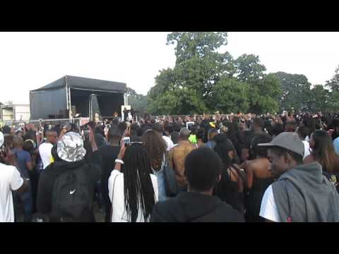 R2bees Sexy Girl from Ghana Party in the Park 2014 Slow Down