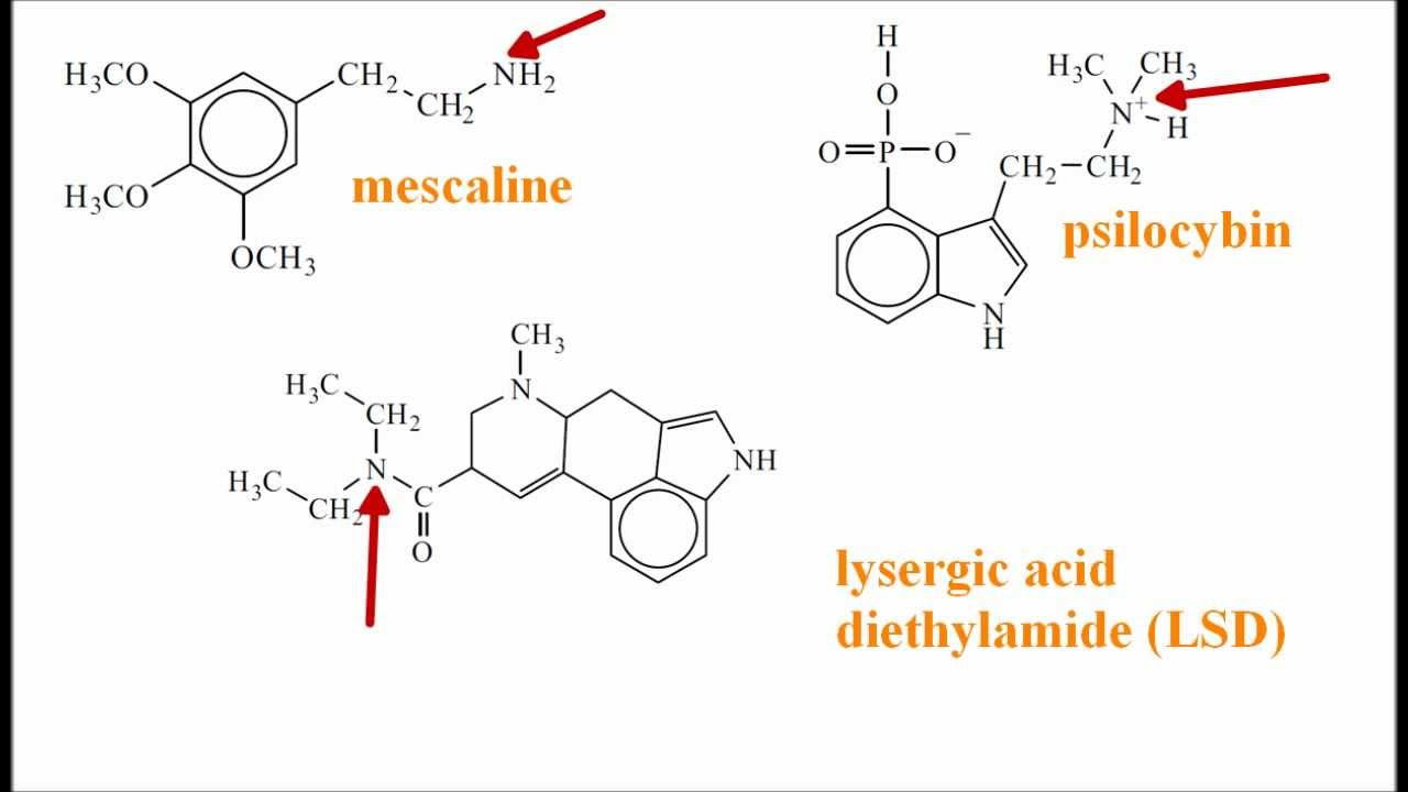 an introduction to d lysergic acid diethylamide lsd 7 2 introduction 21 background lysergic acid diethylamide (lsd) is a semisynthetic compound related to its precursors lysergic acid and lysergic acid amide which are naturally occurring in.