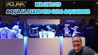 MACE 2019 Aquaja Diamond Line Aquarien + Diskussion