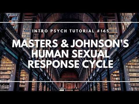 Human Sexual Response Cycle