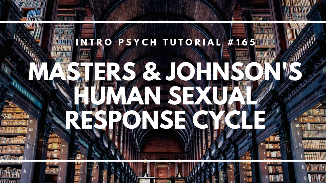 Johnson human sexual response cycle