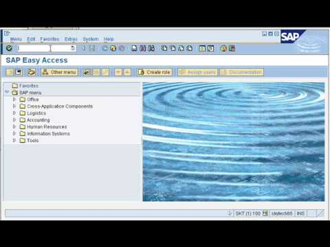 SkyMobile SAP proof of delivery demo from...