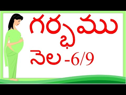 Thumbnail: Pregnancy | Telugu | Month by Month | Month 6 | Week 21 to week 24 | గర్భం నెల 6