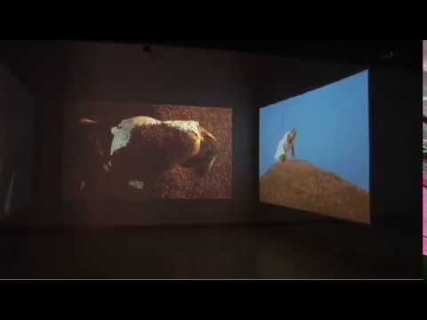 Berni Searle - Approach Exhibition Walkthrough streaming vf