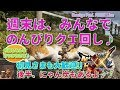 初見さま大歓迎♪ 週末の夜はモンハンしよ!! [MNXX][モンスターハンターダブルクロス][Monster Hunter XX Live]