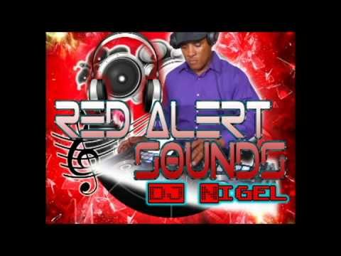 2015 Reggae and Lovers Rock Mix(DJ Nigel - Red Alert Sound)