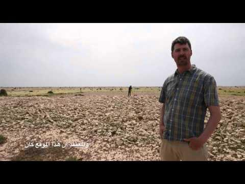 Archaeological Survey at Zarqa, Qatar