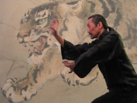 Tiger Claw Kung Fu - Hand Position and Conditioning!