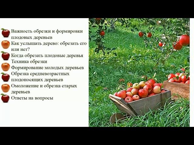 Обрезка плодовых деревьев от А до Я. Полная версия вебинара Николая Рабушко. Зачем? Как? Когда? ©