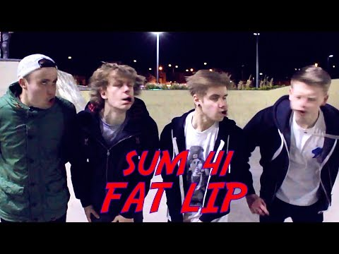 SUM 41 FAT LIP COVER