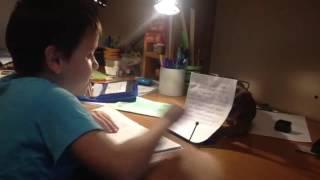 Котенок помогает делать уроки.