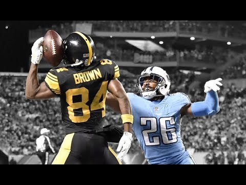 Greatest Steelers Catches of All Time ᴴᴰ