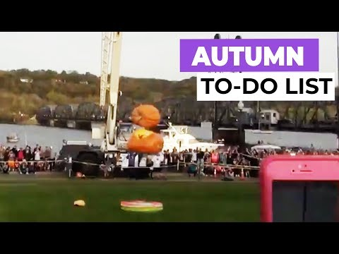 Best Things To Do In Autumn