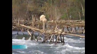 เขื่อนดอนสะโฮง  วิกฤตของเส้นทางอพยพของปลาแม่น้ำโขง
