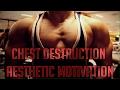 Resj Hamid - CHEST DESTRUCTION | AESTHETIC GYM MOTIVATION