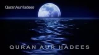 Hazrat Umar RA ki Shahdat ka Waqia   The Death Story of Umar Radi Allahu Ta'ala anhu in Urdu