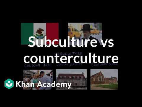 Subculture vs counterculture | Society and Culture | MCAT | Khan Academy