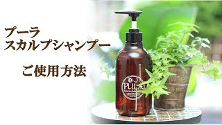 【実技の時間】PULAスカルプシャンプーのご使用方法