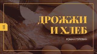Вся правда Дрожжи и хлеб Лабиринты Питания