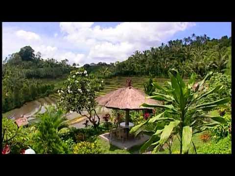 Bali Kon Tiki