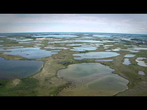 Out on the Tundra in Churchill - Manitoba, Canada