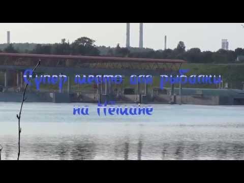 рыбалка на немане в гродно видео 2015