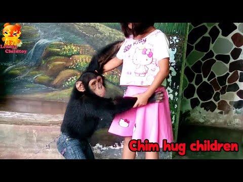 So cute!!! Chimpanzee want to hug children