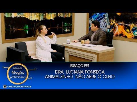 Espaço Pet | Dra. Luciana Fonseca | Pgm N° 664 | B3