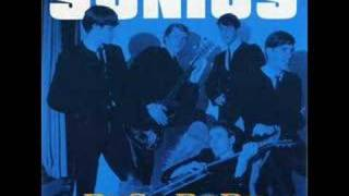 The Sonics-Busy Body