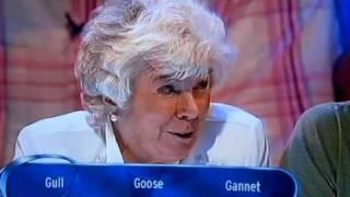 Eggheads Daphne Fowler goosie goosie gander