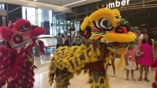Lion Dance Grand Entrance // Takashimaya Saigon Mall