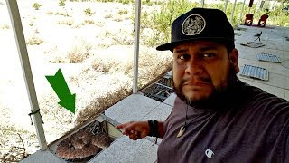 Las Vegas Abandoned Building with Snakes - Almost got bit