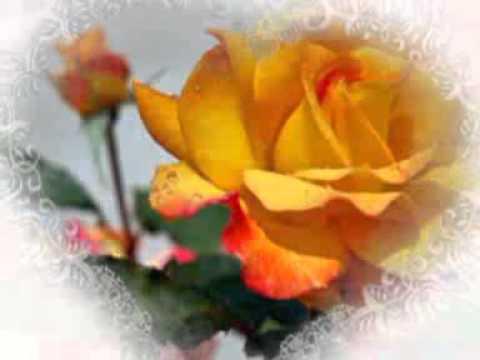 Цветок Любви
