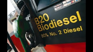 BioDiesel and My opinion on it