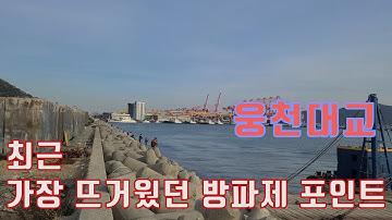 감성돔낚시, 생활낚시 - 20201128 진해 웅천대교 방파제 소개